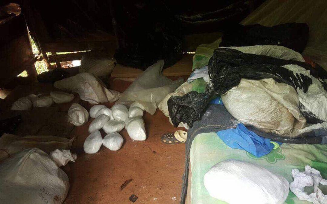 FANB desmanteló campamento destinado a la producción de cocaína en el Zulia